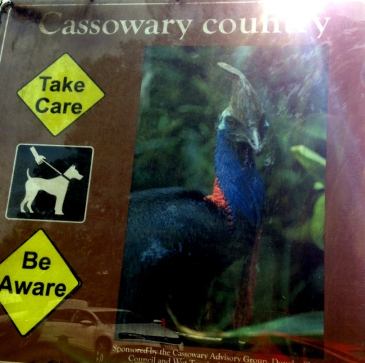 Cassowary warning sign, Daintree National Park.