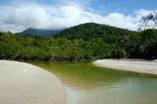Estuary, Myall Beach, Daintree Rainforest