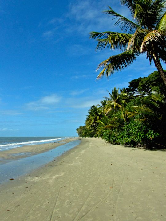 Myall Beach, Daintree rainforest