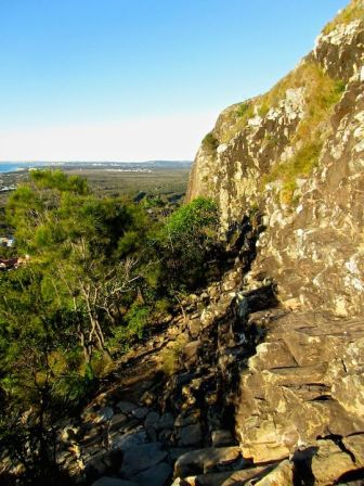 Trail up Mt. Coolum.