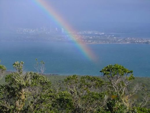 View from Rangitoto island summit