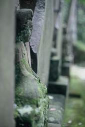 Kamakura cemetary