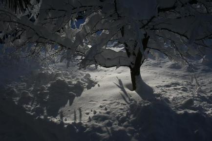 DC Snow 2
