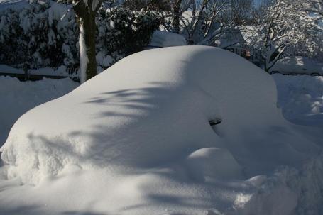 DC Snow 7